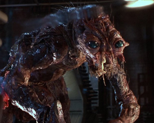 HT18: CRITTERS 2_THE FLY II